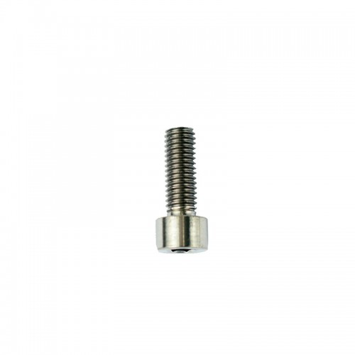 Slingshot HG M8 x 23mm Titanium Bolt